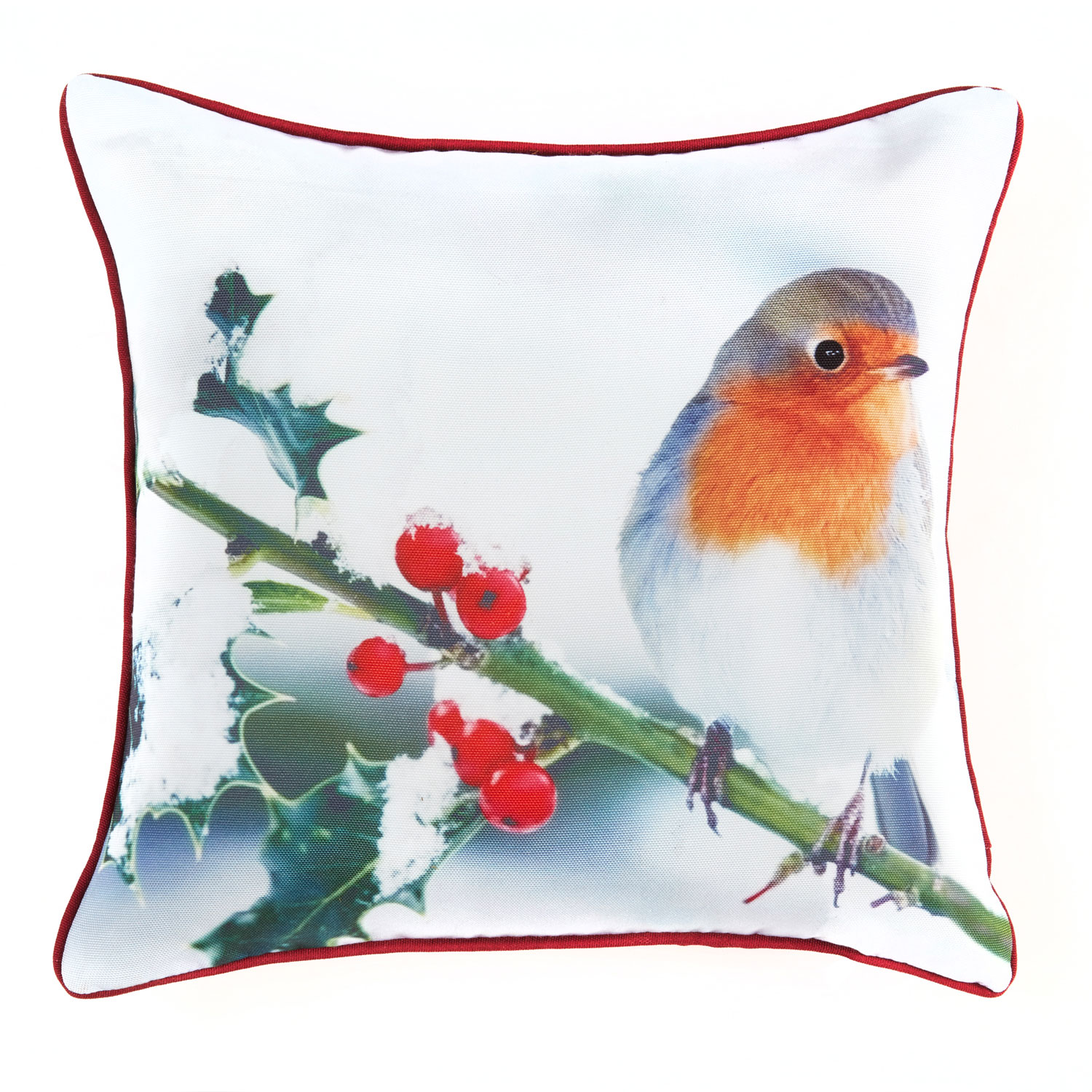 Printed Hollowfibre Square Filled Robin Cushion